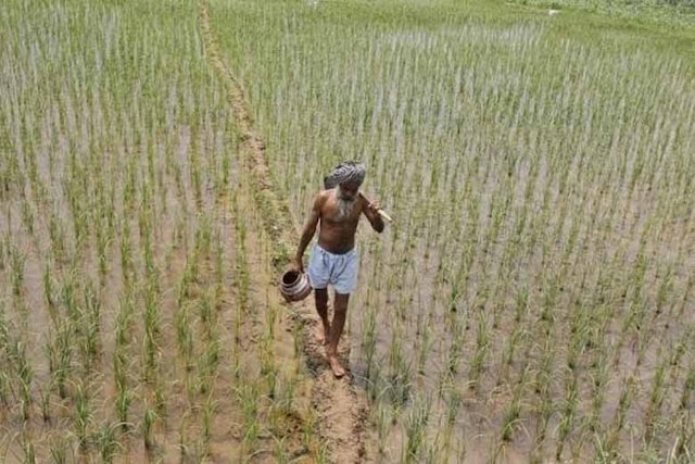 MSP for kharif crops to be 1.5 times input cost: Jaitley
