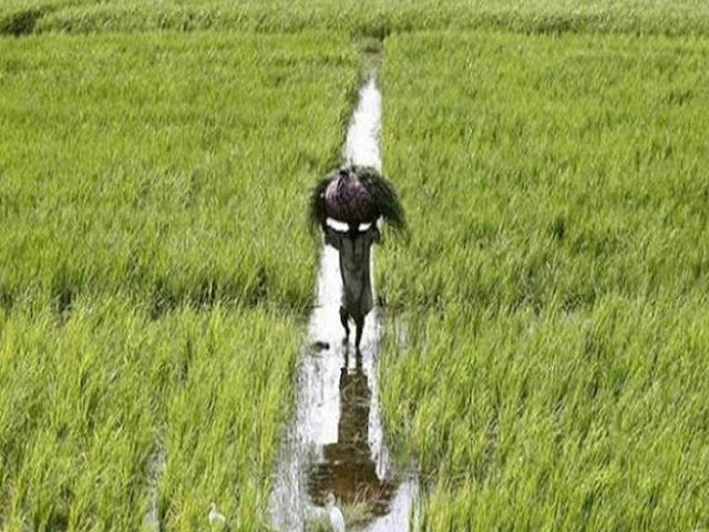 Bonanza to farmers in first Cabinet; govt extends PM-KISAN, announces new farm pension scheme