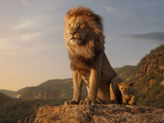 Hindi trailer for Disney's 'The Lion King' released, to be attached with Salman Khan's 'Bharat'