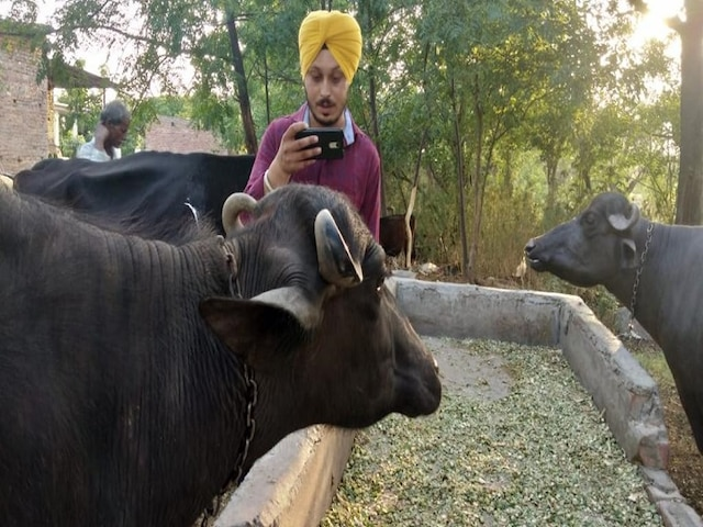 Cattle Facial Recognition – a breakthrough technology by MoooFarm solving India's key challenge of cattle identification
