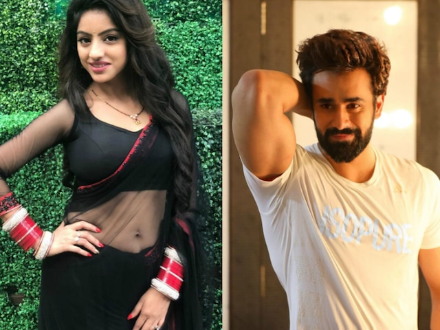 What Independence Day means to 'Bepanah Pyaarr' actor Pearl V Puri, 'Kawach' actress Deepika Singh & other small screen stars!
