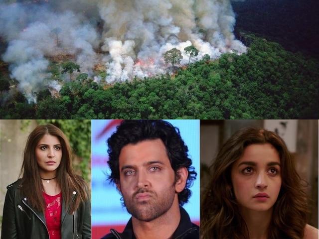 Amazon Rainforest Fire: Alia Bhatt, Hrithik Roshan, Anushka Sharma, Arjun Kapoor & Other Bollywood Celebs Concerned Over Amazon forest blaze