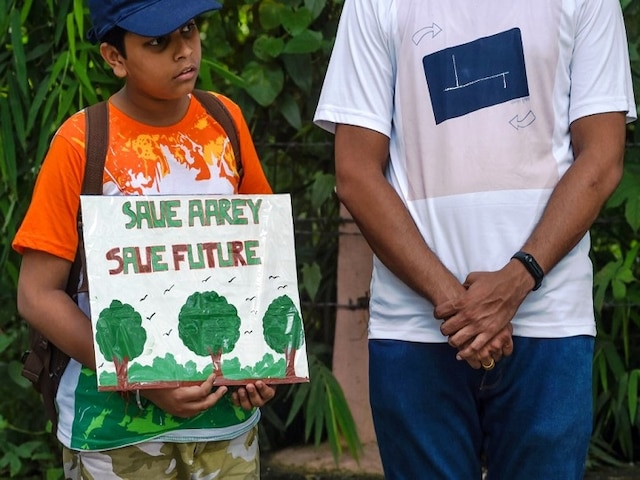 Setback for 'Save Aarey' Campaigners As Bombay HC Dismisses Petitions Against Felling of Over 2,700 Trees