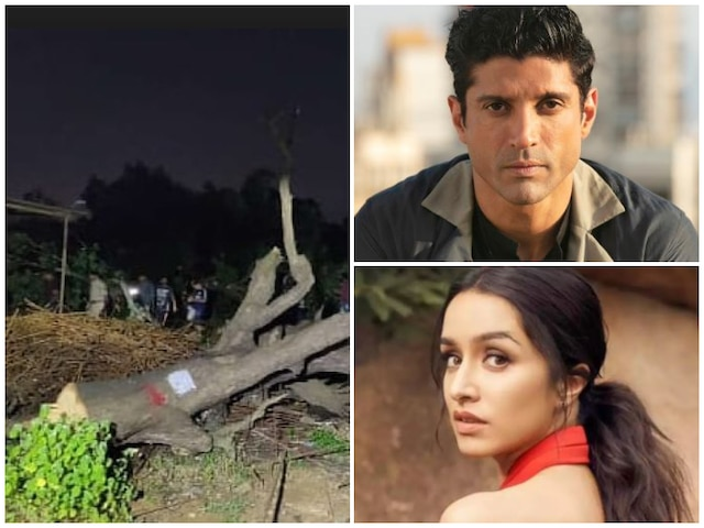 Aarey Protest: Bollywood Stars Vent Anger Over Slashing Trees Of Aarey Colony
