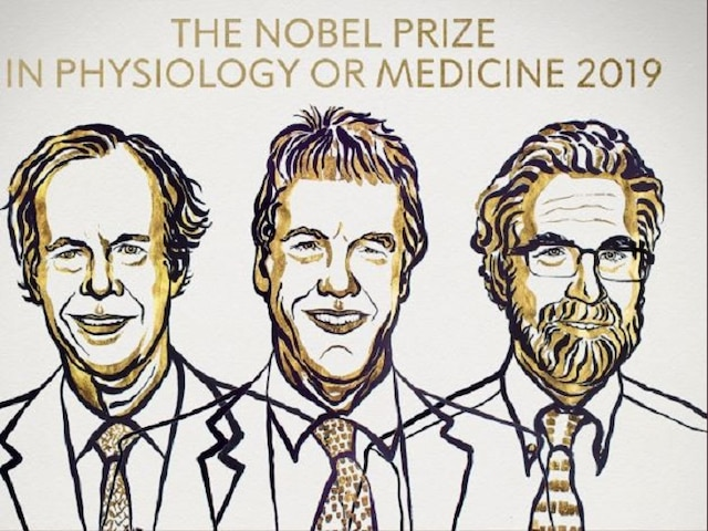Nobel Prize In Medicine Jointly Awarded To 3 For Learning How Cells Use Oxygen