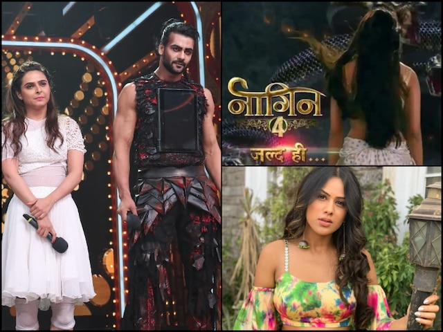 Naagin 4: Vishal Aditya Singh & Madhurima Tuli To Be PART Of Nia Sharma's Show?
