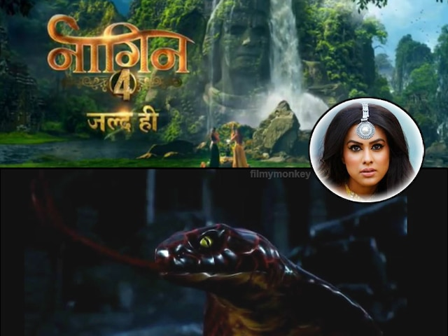 'Naagin 4: Bhagya Ka Zehreela Khel' New Teaser OUT: Nia Sharma's name revealed as Naagrani 'Brinda', Bad Naagin introduced who will attack her! Is that Madhurima Tulli?