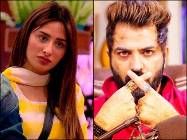 Bigg Boss 13 Did Mahira Sharma Break Up With Bigg Boss 10