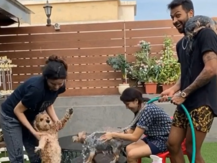 WATCH: Natasa Stankovic Enjoys Pet Dog Bath Session With Hardik Pandya