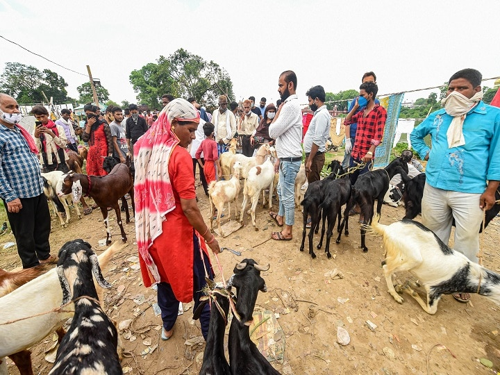 Eid Al-Adha 2020: History, Significance, Date, Celebrations And More To Know About 'Festival Of Sacrifice'