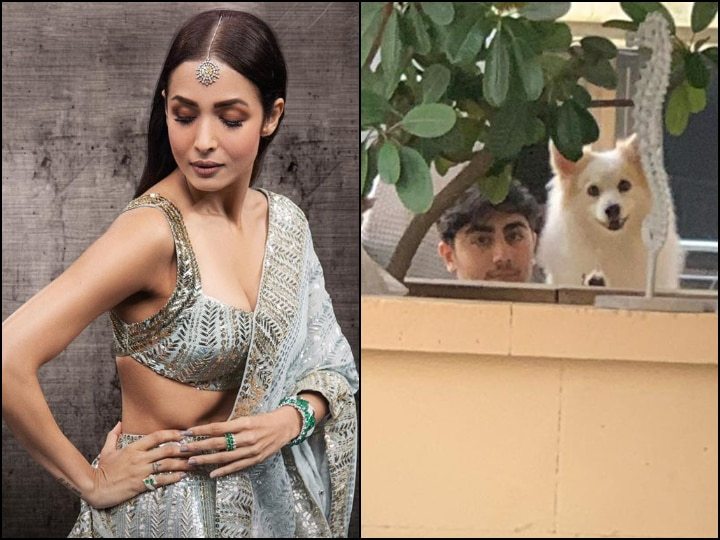 COVID-19 Positive Malaika Arora's Heart Breaks On Not Being Able To Hug Her Babies; Says 'Love Knows No Boundaries'