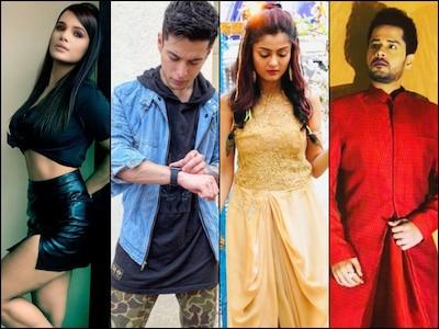 Bigg Boss 14 Wild Card Contestants List: Naina Singh, Pratik Sehajpal, Rashmi Gupta, Shardul Pandit To Enter Salman Khan's Show?