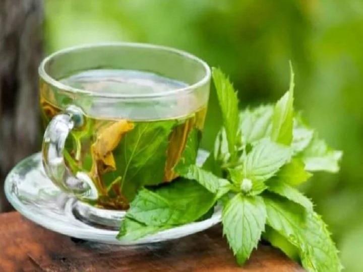 benefits of green tea good for heart control blood pressure makes bones