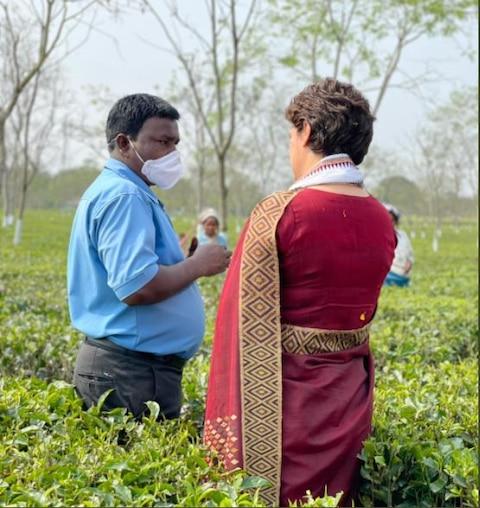 Photos: प्रियंका गांधी ने चाय बागान में मजदूरों संग तोड़ीं पत्तियां, कहा- इनसे मिला प्यार नहीं भूलूंगी