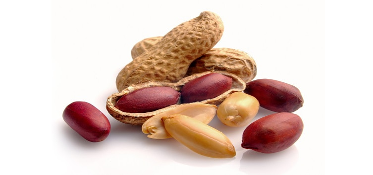 Protein In Natural Food: There is a lack of protein in the body, so these are the best natural sources of protein