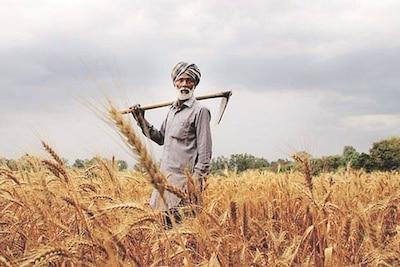 Exemption To Punjab Farmers   ਕੈਪਟਨ ਸਰਕਾਰ ਨੇ ਕਿਸਾਨਾਂ ਨੂੰ ਦਿੱਤੀ ਵੱਡੀ ਰਾਹਤ